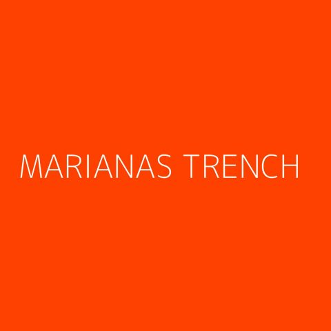 Marianas Trench Playlist – Most Popular