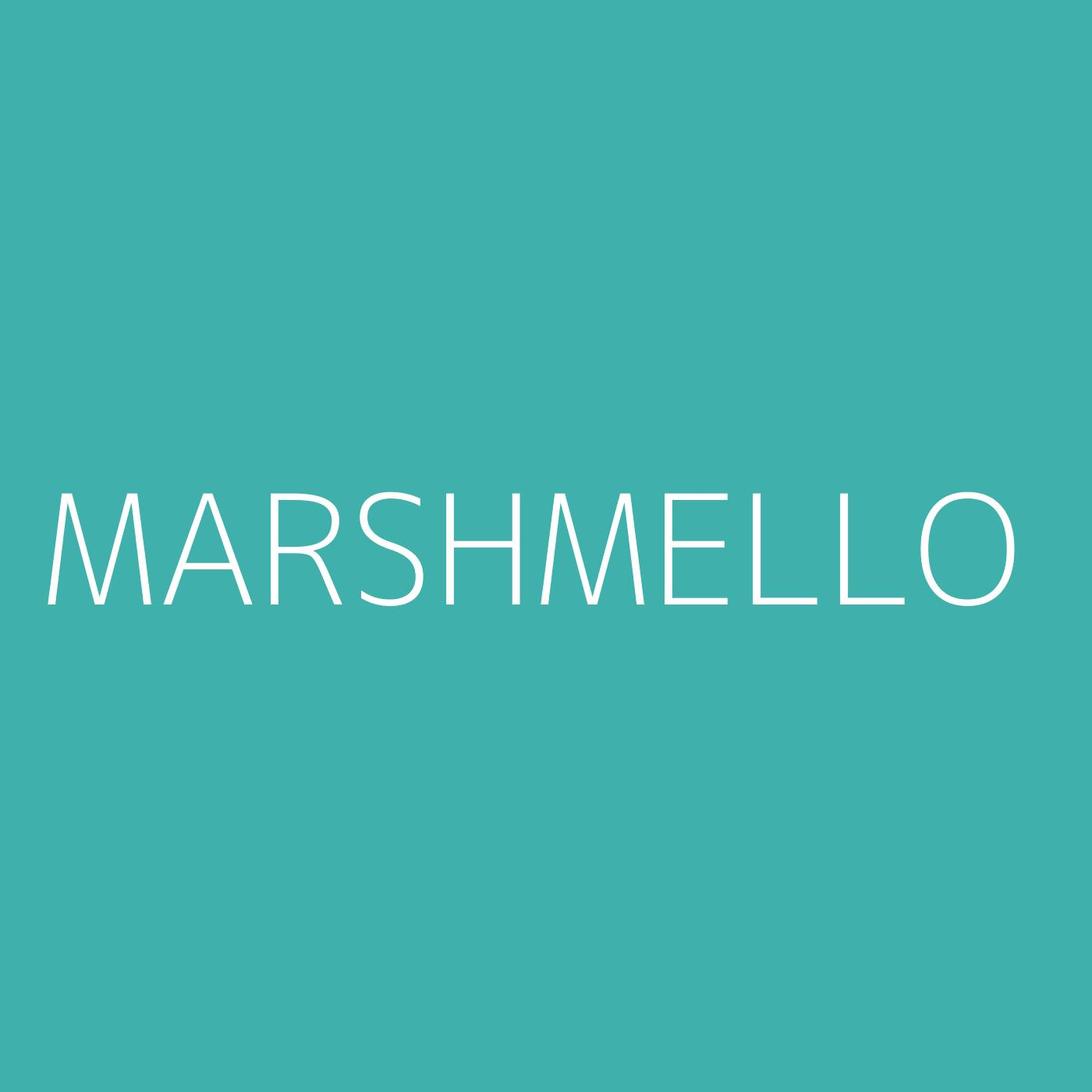 Marshmello Playlist Artwork