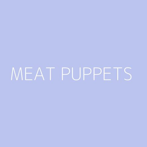 Meat Puppets Playlist – Most Popular