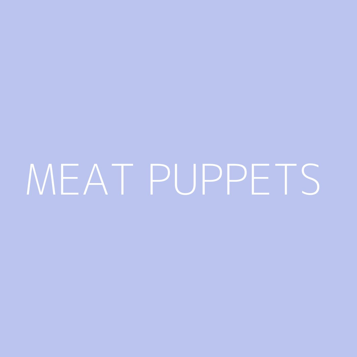 Meat Puppets Playlist Artwork