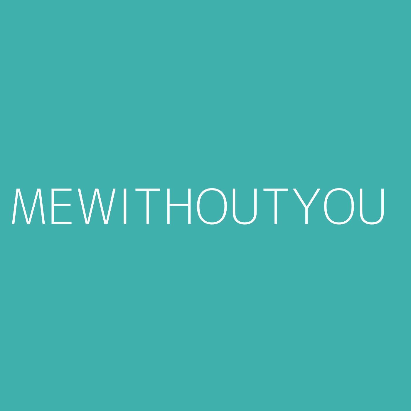 mewithoutYou Playlist Artwork