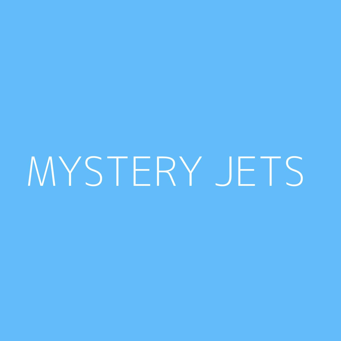 Mystery Jets Playlist Artwork