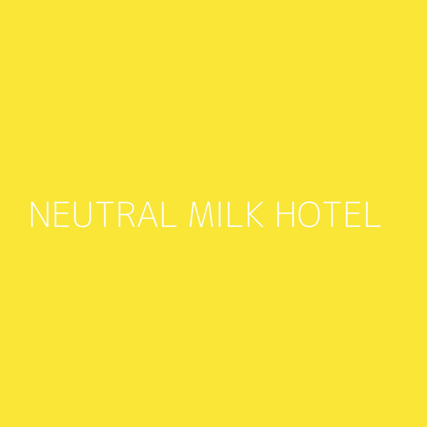 Neutral Milk Hotel Playlist Artwork