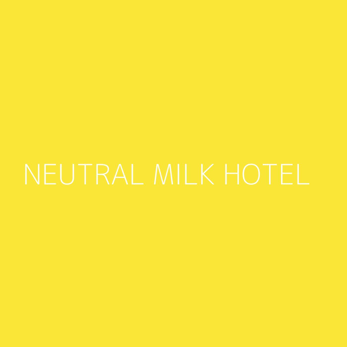 Neutral Milk Hotel Playlist Artwork