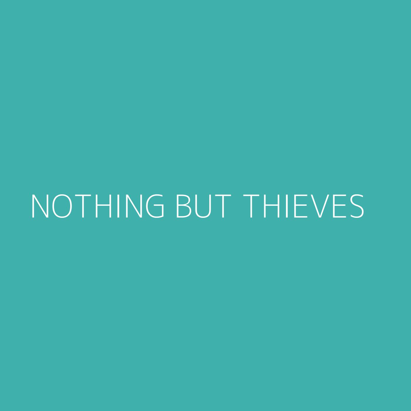 Nothing But Thieves Playlist Artwork