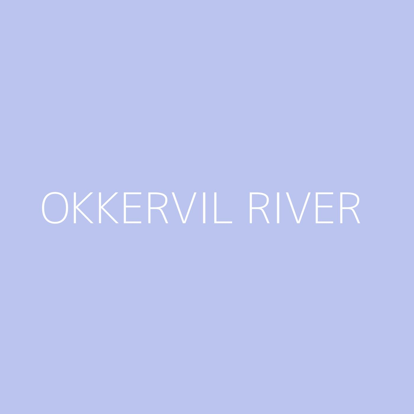 Okkervil River Playlist Artwork