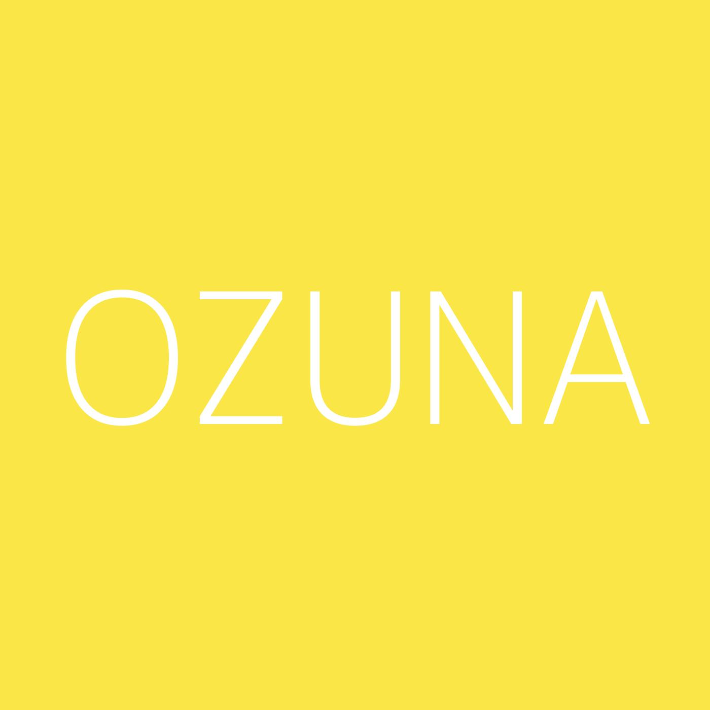 Ozuna Playlist Artwork