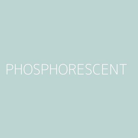 Phosphorescent Playlist – Most Popular
