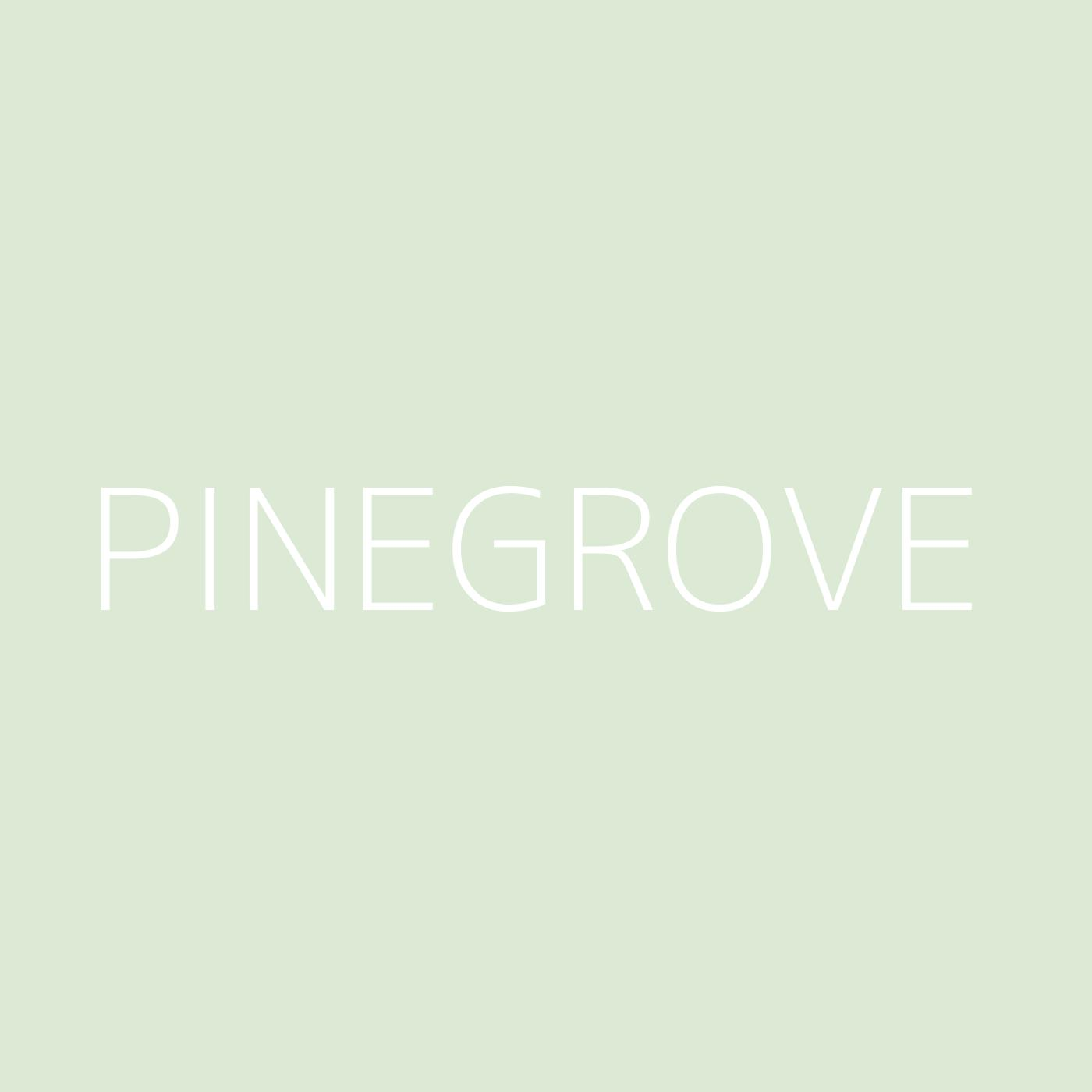 Pinegrove Playlist Artwork