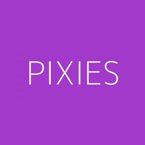 Pixies Playlist – Most Popular