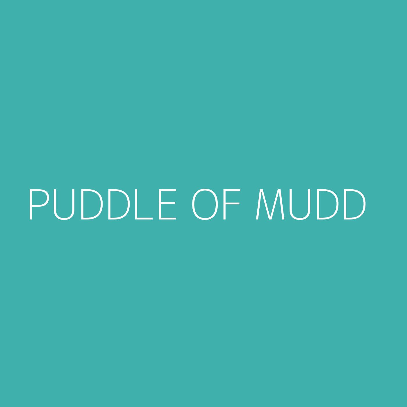 Puddle Of Mudd Playlist Artwork
