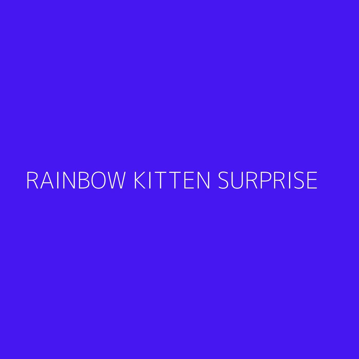 Rainbow Kitten Surprise Playlist Artwork