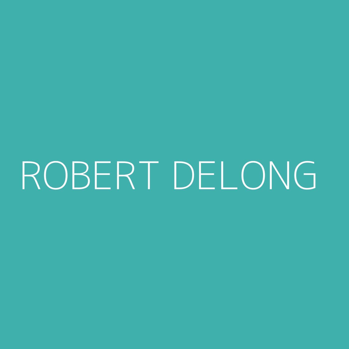 Robert DeLong Playlist Artwork