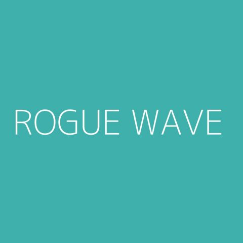 Rogue Wave Playlist – Most Popular