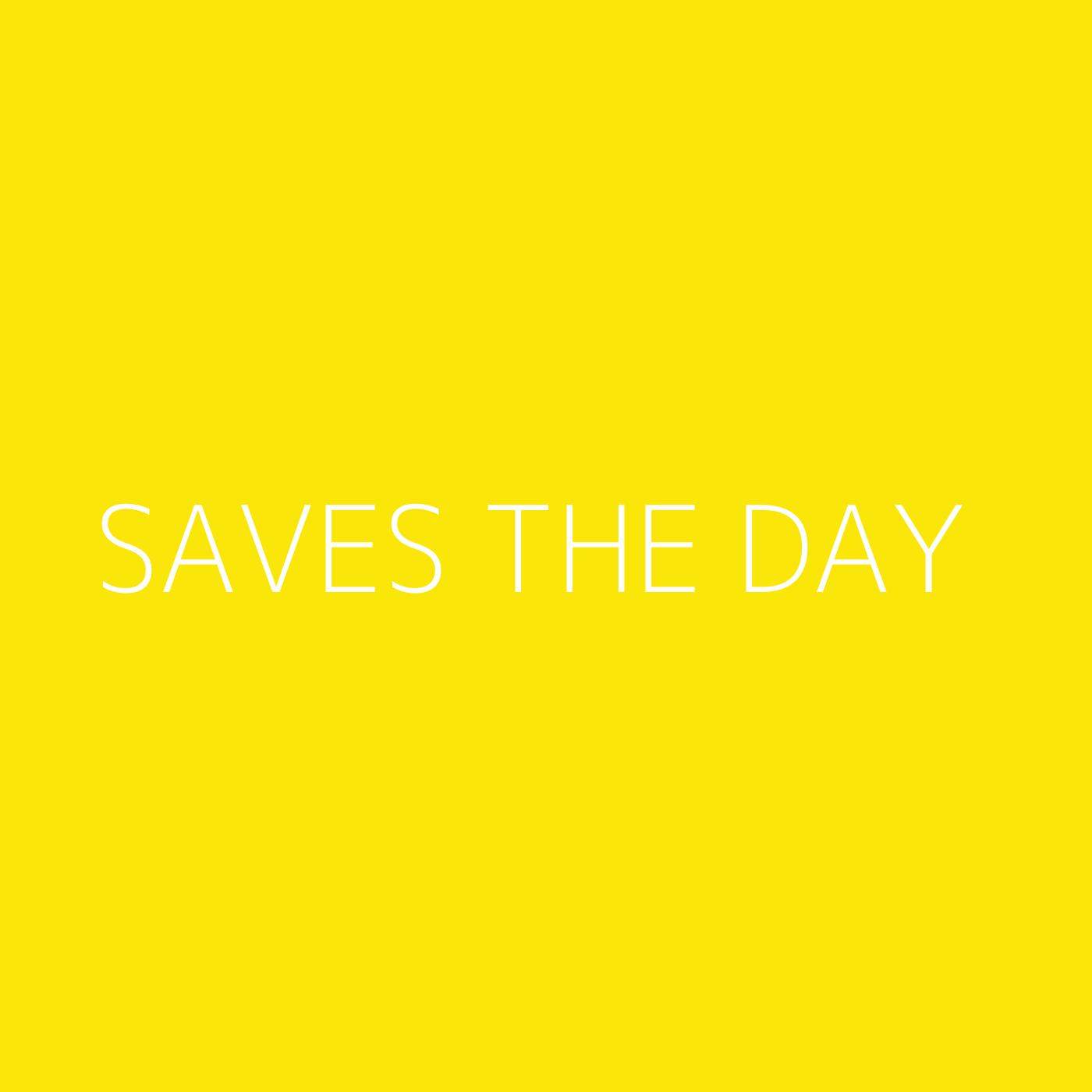 Saves The Day Playlist Artwork