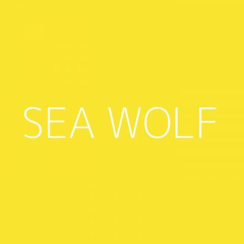 Sea Wolf Playlist – Most Popular