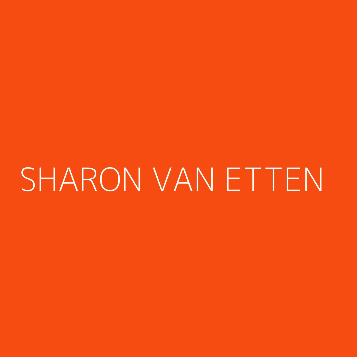 Sharon Van Etten Playlist Artwork