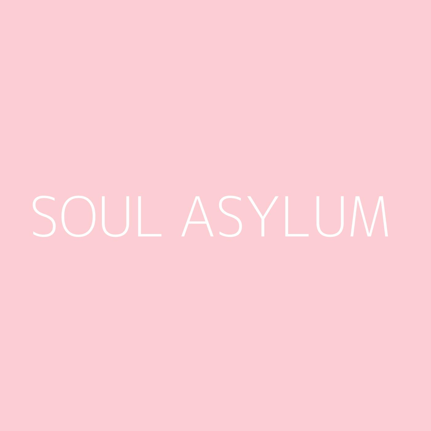 Soul Asylum Playlist Artwork