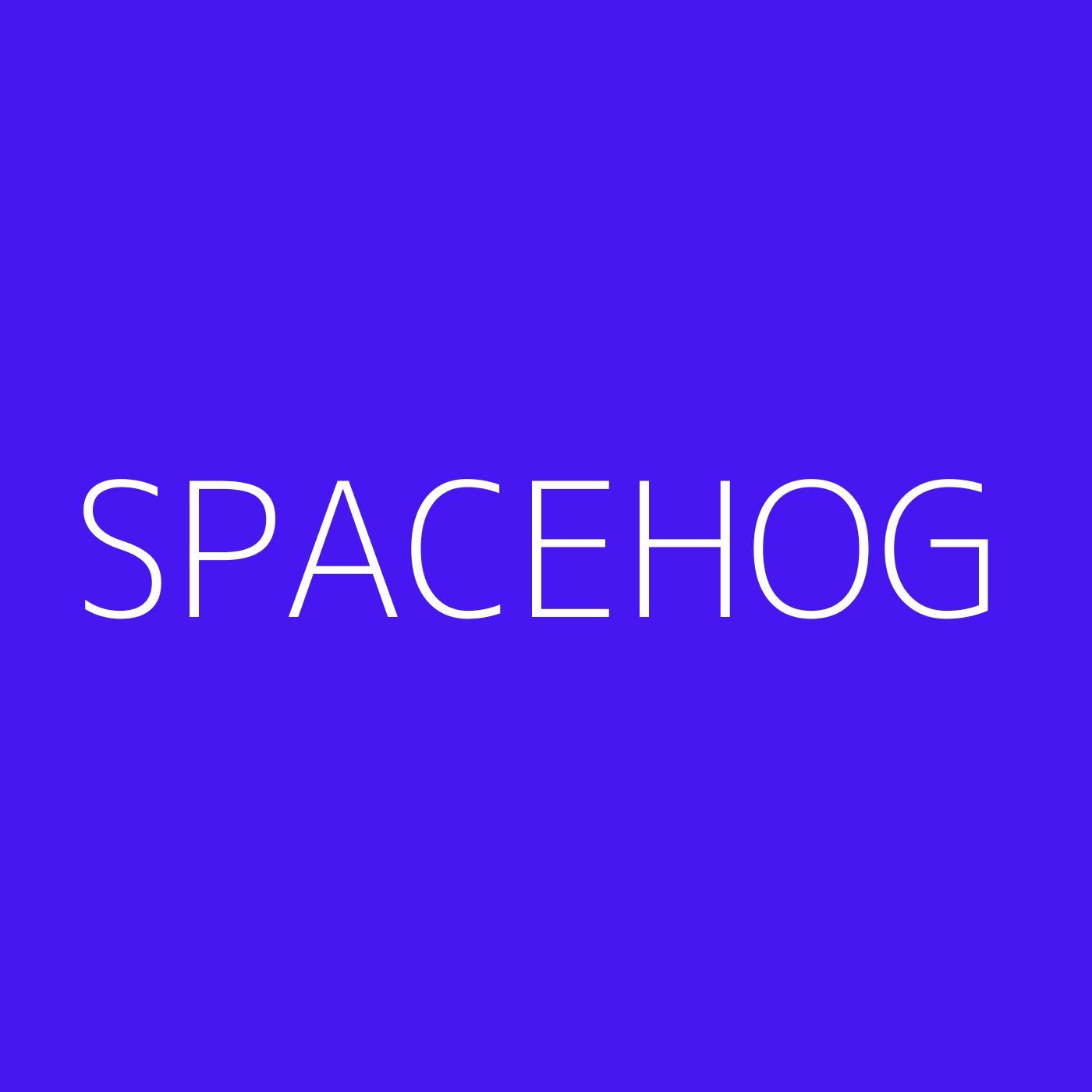 Spacehog Playlist Artwork