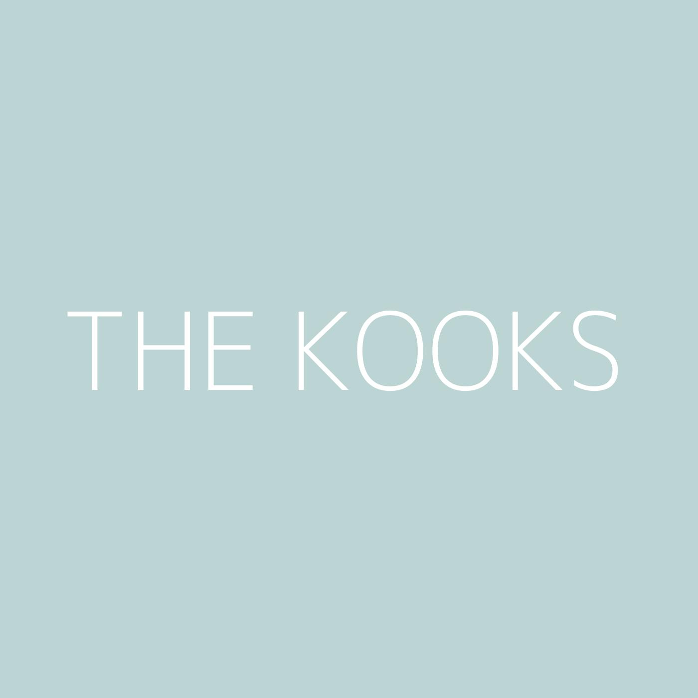 The Kooks Playlist Artwork