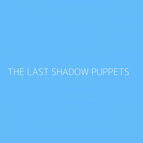 The Last Shadow Puppets Playlist – Most Popular