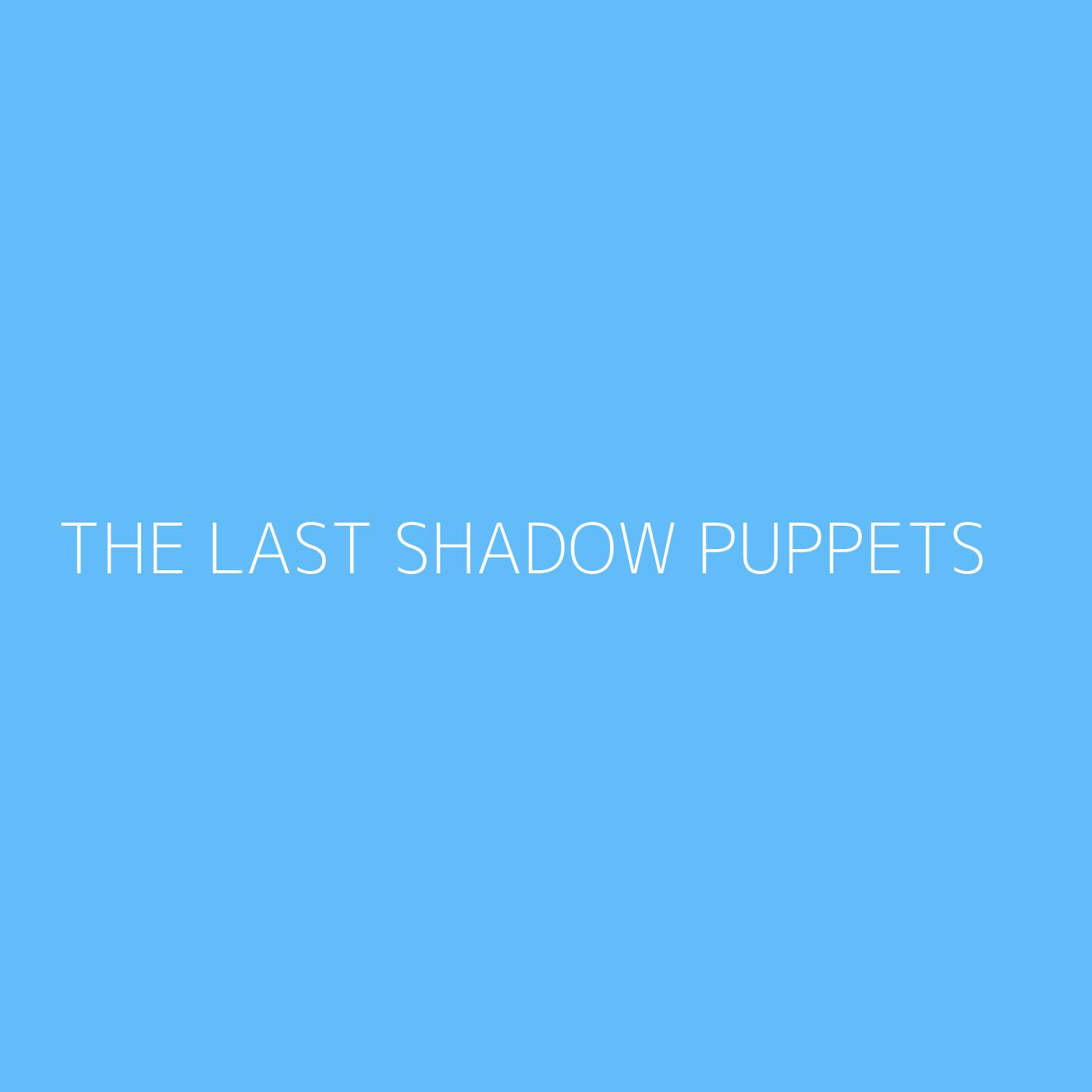 The Last Shadow Puppets Playlist Artwork