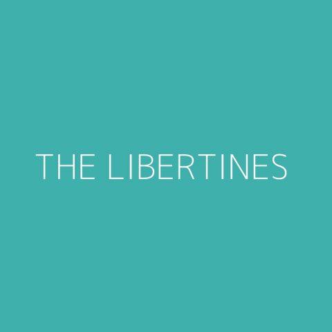 The Libertines Playlist – Most Popular