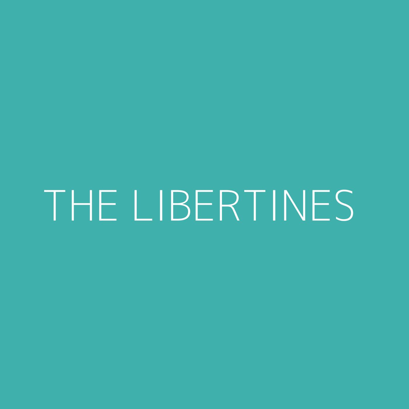 The Libertines Playlist Artwork
