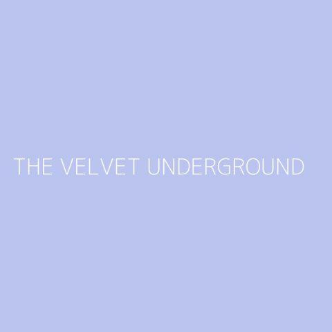 The Velvet Underground Playlist – Most Popular