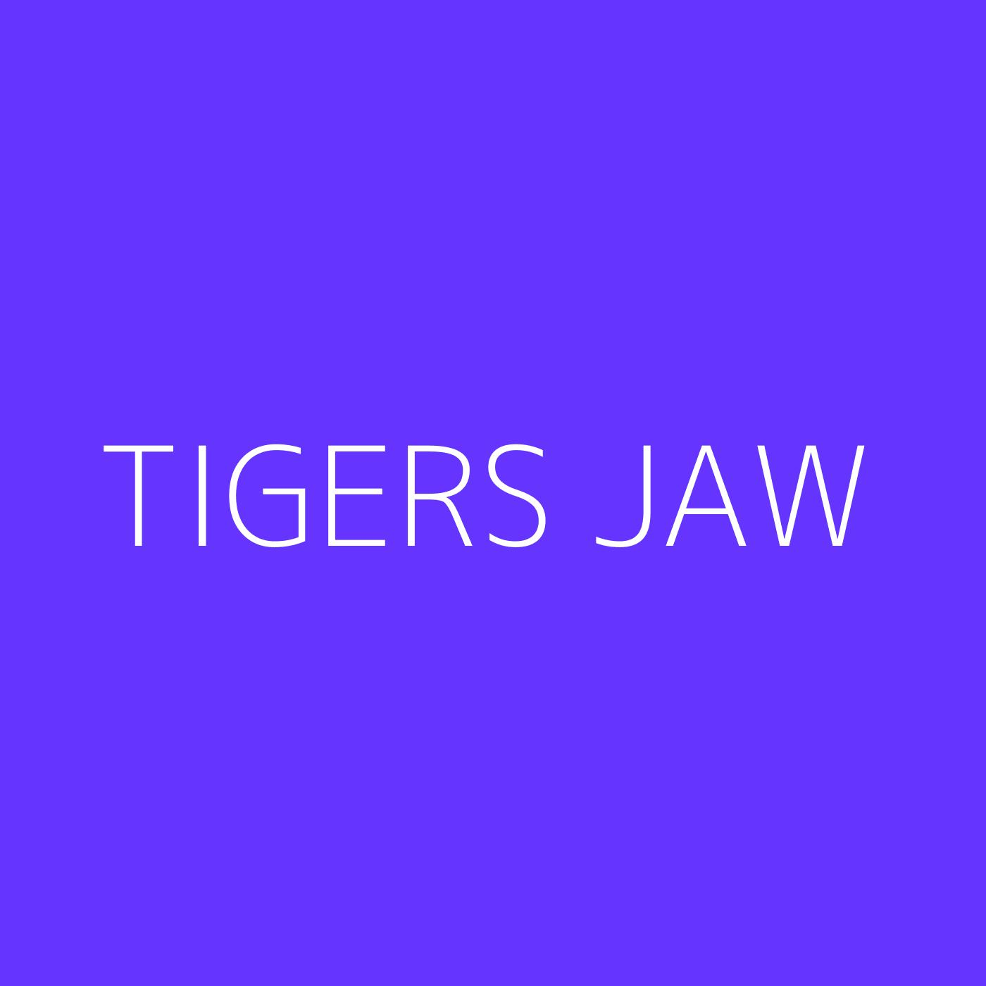 Tigers Jaw Playlist Artwork