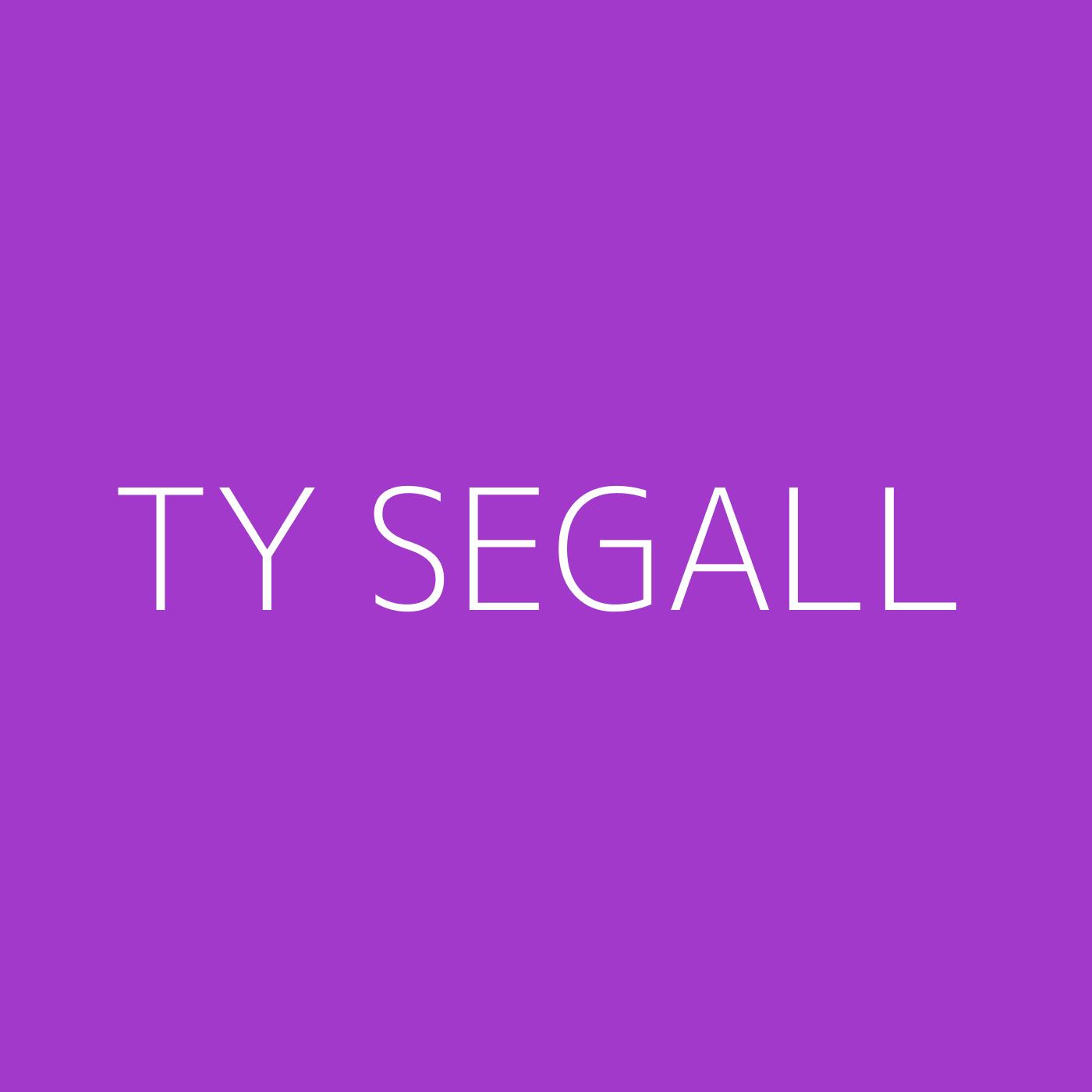 Ty Segall Playlist Artwork