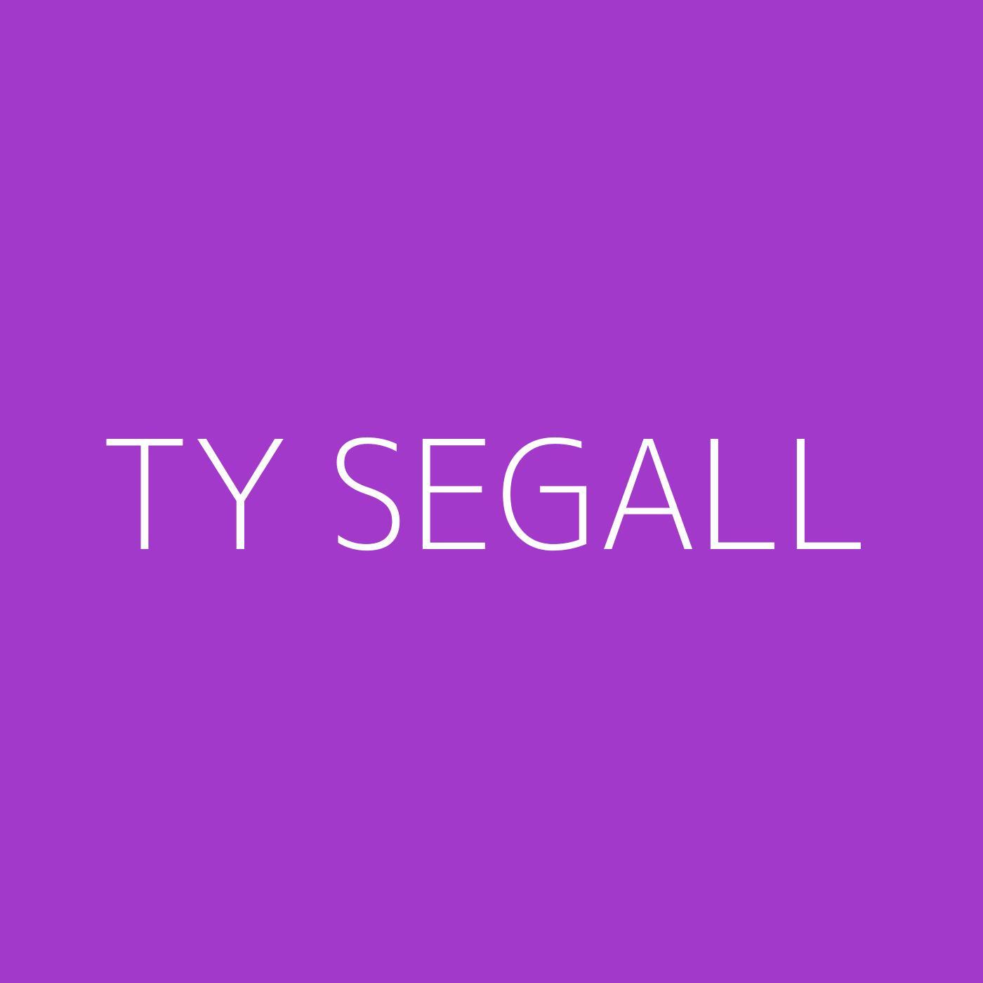 Ty Segall Playlist Artwork