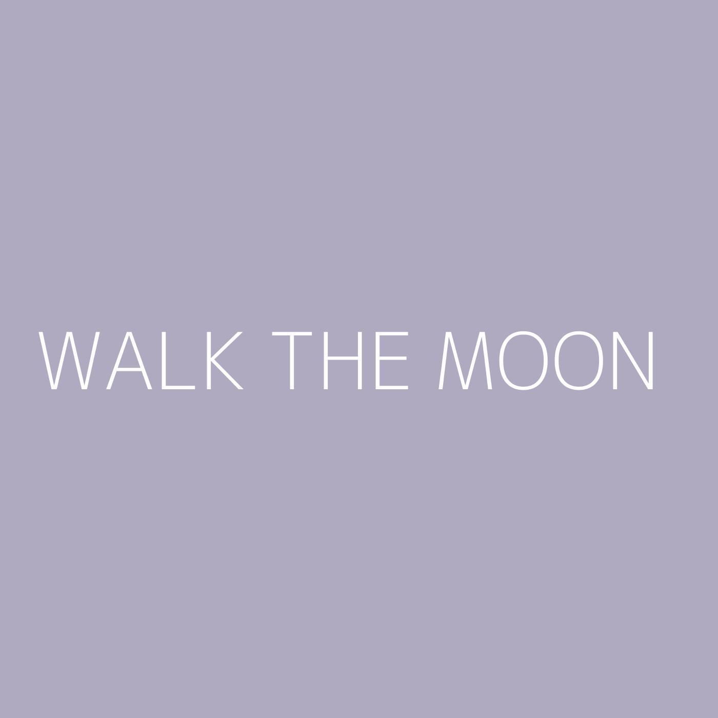 WALK THE MOON Playlist Artwork