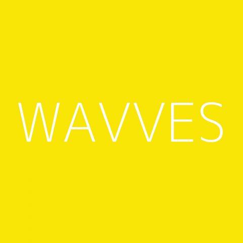 Wavves Playlist – Most Popular