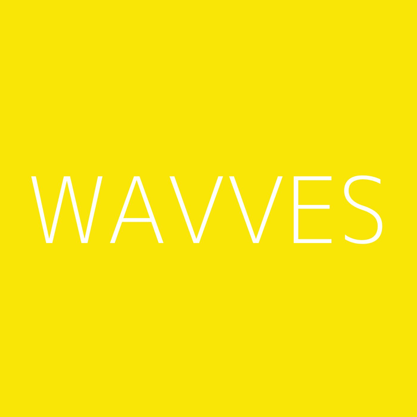 Wavves Playlist Artwork