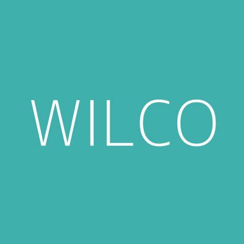 Wilco Playlist – Most Popular