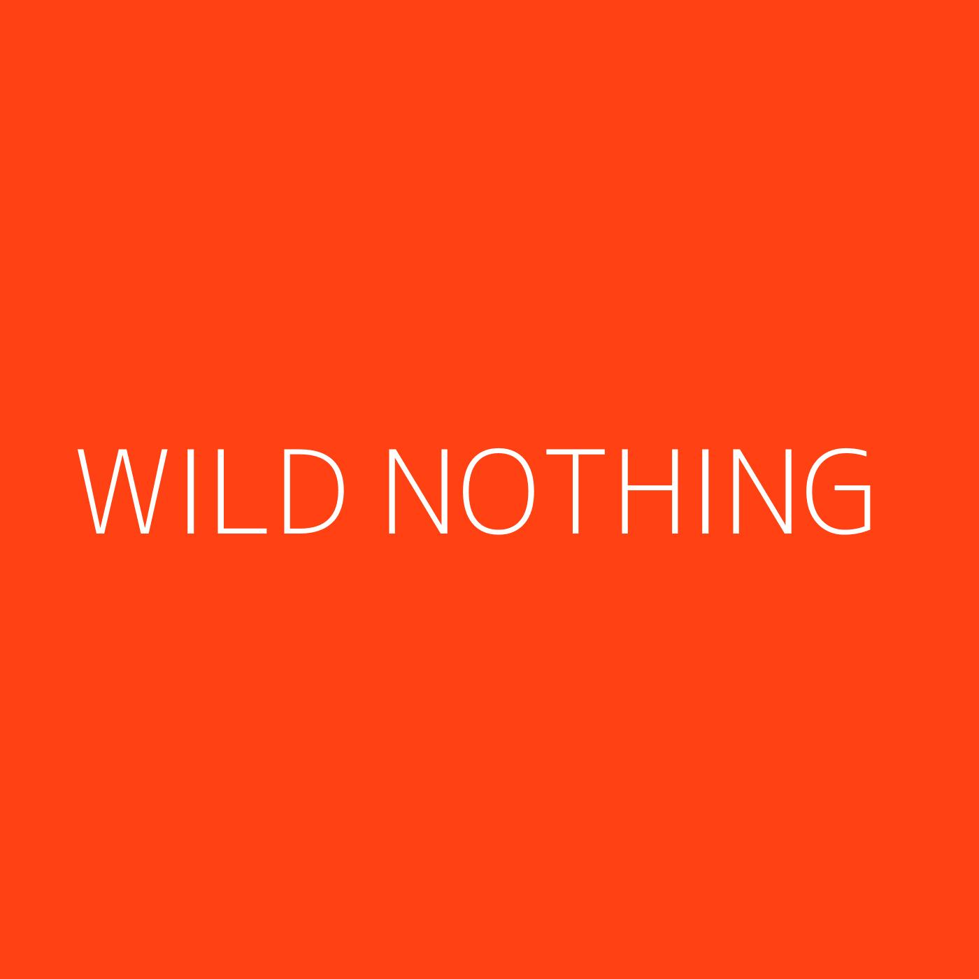 Wild Nothing Playlist Artwork
