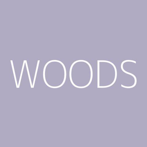 Woods Playlist – Most Popular