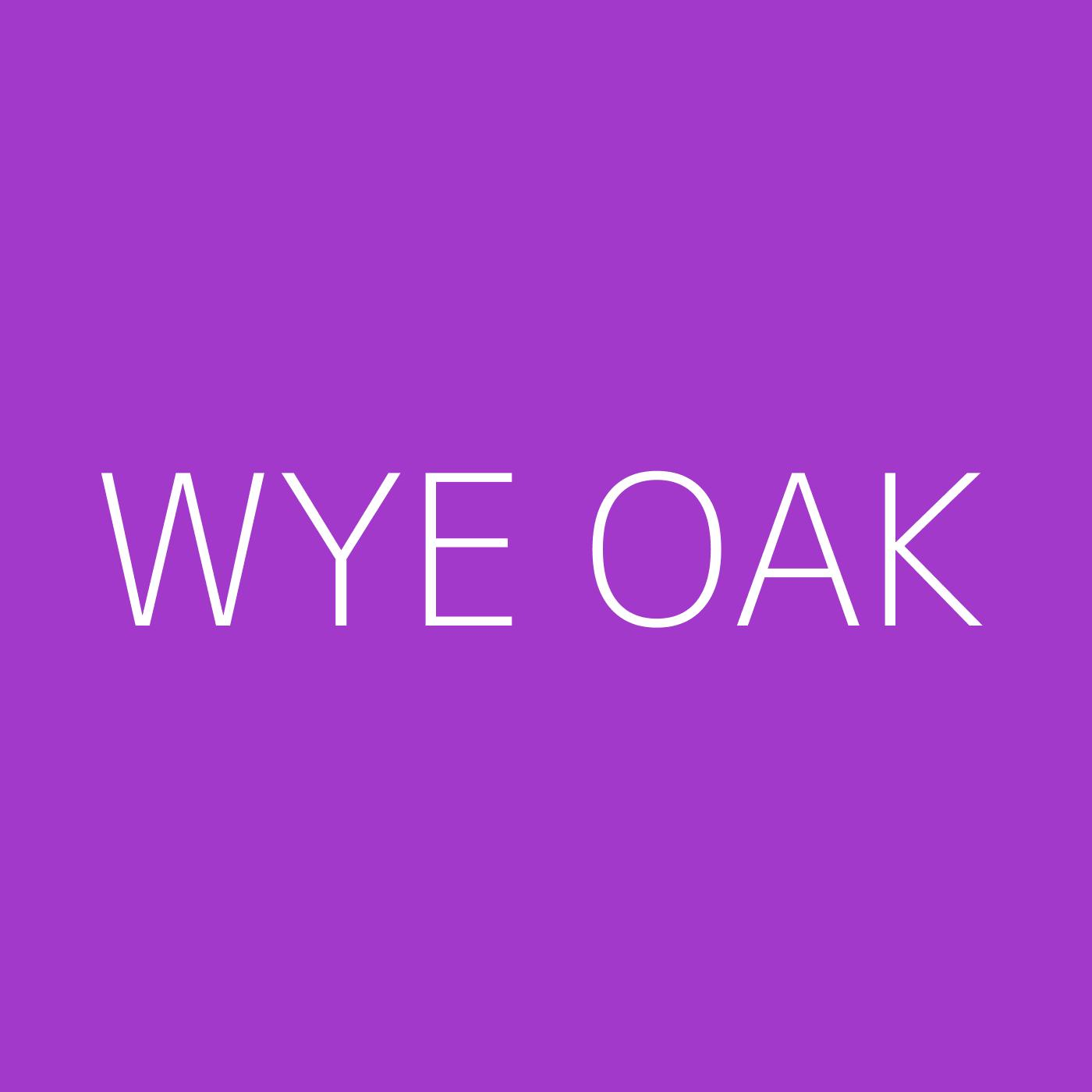Wye Oak Playlist Artwork
