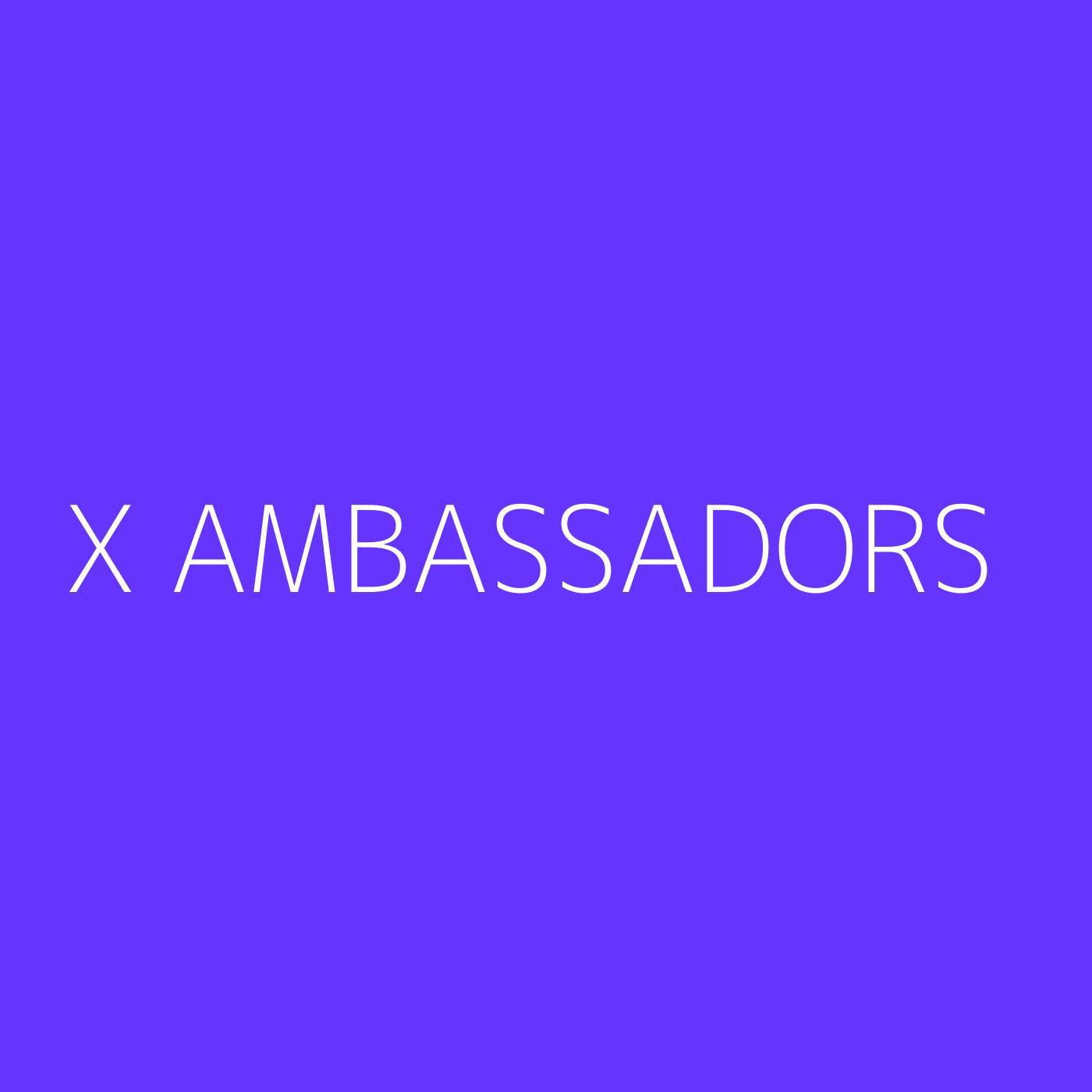 X Ambassadors Playlist Artwork
