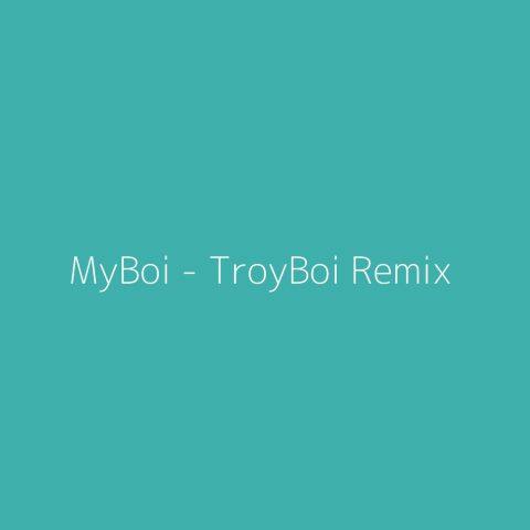 MyBoi – TroyBoi Remix – Billie Eilish